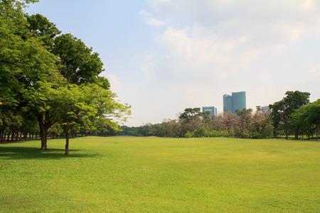 건물 배경과 푸른 하늘 아래 도시 공원