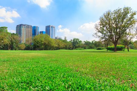 City park under blue sky with building background