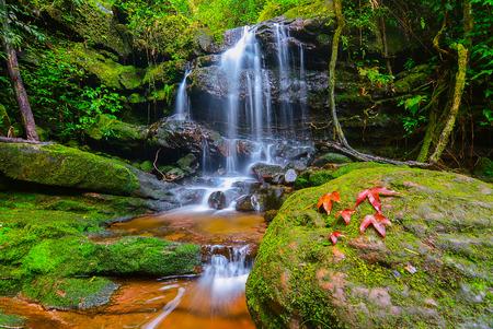 soi: Waterfall at Phu Soi Dao in Uttaradit, Thailand.