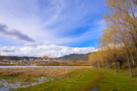 lake front: Beautifull Golden Forests and Lake front of Songzanlin - Tibetan Monastery in Shangrila, Yunnan, China