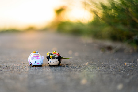 Chiang Mai, Thailand - June 10, 2016: Photo of Disney Tsum Tsum cars toy While giving flowers to Tsu Tsum women with shyness at side road with warm light.