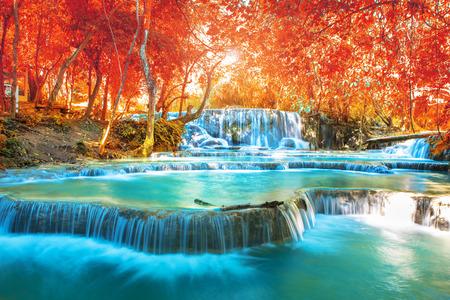 """가을 포리스트의 폭포, 붉은 꽃 봄 필터 루앙 피우는 라오 어에서 """"Tat Kuang Si 폭포""""이름."""