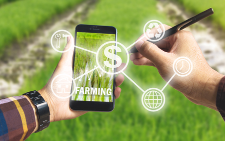 Hand holding smart phone and electronic pen with business icon and up trends income chart on screen over rice field background for Ecology Farming Agriculture, Environment Concept.