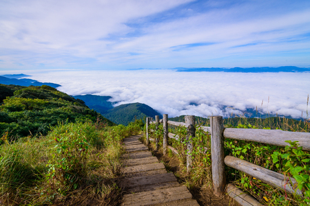 Scenic sea of fog with wooden walk way in Kew Mae Pan nature trail at sunrise. The Doi Inthanon National Park in Chiang Mai, Thailand. Banco de Imagens