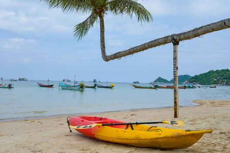 Colorful kayaks parking on tropical beach with coconut tree koh tao Island, Thailand.
