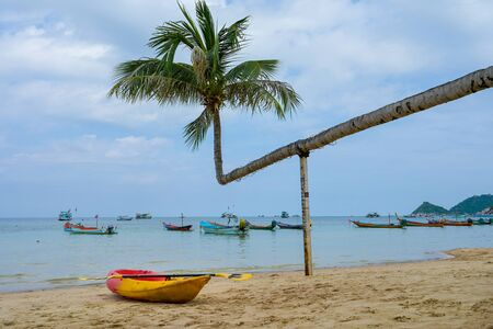 Colorful kayaks parking on tropical beach with coconut tree koh tao Island, Thailand. 스톡 콘텐츠 - 131488905