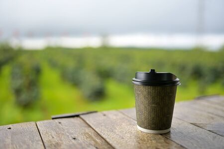 Cup of coffee in the beautiful coffee plantations in the mountains of laos.