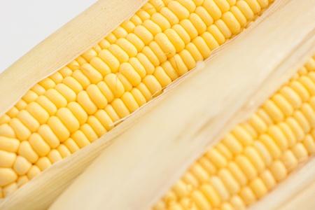 shuck: close up of fresh corn Stock Photo