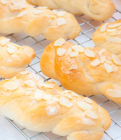 rows of almond bread on whith background