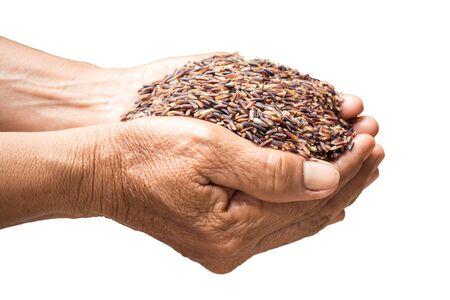 arroz: arroz crudo en manos holding en el fondo blanco Foto de archivo