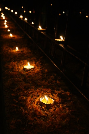 Beautiful Diwali lamps arranged traditionally with flower petals.
