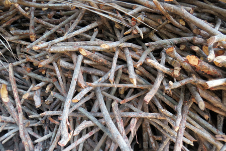 stocked: A background of a pile of stocked firewood