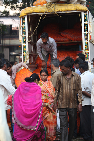 sack truck: Pune, India - October 21, 2015: A man unloads his marigold flower sacks to small sellers after auctioning them on the eve of Dassera festival in India in which these flowers are traditionally used.