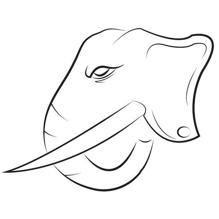 Elephant Head Stock Vector - 17976870