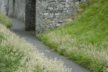A grass lined path leads into the grounds of a coastal castle in Wales.