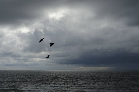 A distant boat on the horizon lit up by a break in the storm clouds with three silhouetted Ravens  photo