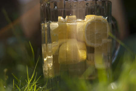 A Large glass jug of lemons and water,  placed  in bright green grass on a sunny day  Stock Photo