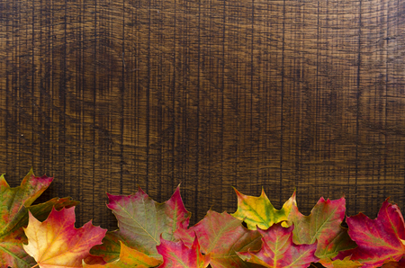 An oak wood background decorated with colourful autumn leaves along bottom edge,  with room for text.