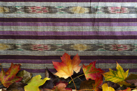 A cloth background decorated with colourful autumn leaves along bottom edge,  with room for text on cloth. Stock Photo