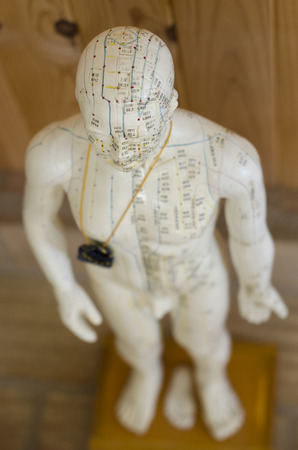 Acupuncture statue showing meridians and Acupinture points