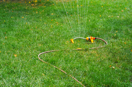 spaying: Lawn sprinkler spaying water over green grass with autumn yellow leaves. Irrigation system Stock Photo