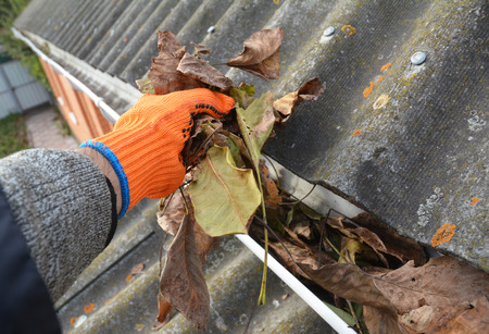 雨が秋に葉から溝のクリーニング