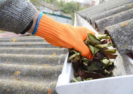 秋に葉から溝掃除は雨の手で。屋根の雨樋がクリーニングのヒント。あなたの財布をきれいに掃除する前に、あなたの溝をきれいに。雨樋の清掃し 写真素材