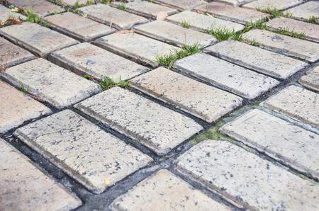 Old brick patio pavement in the garden.