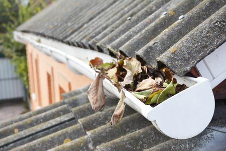 가 [NULL]에 타락 한 잎 지붕 제본 용 여백입니다. 빗물 받이 청소. 스톡 콘텐츠