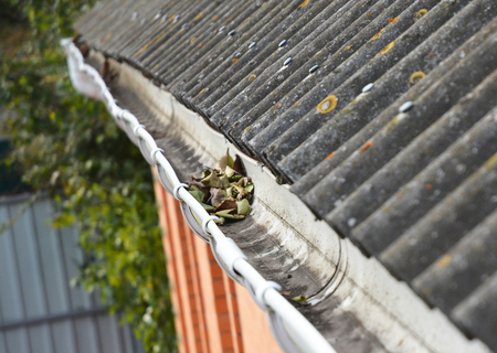 Rain Gutter Cleaning from Leaves in Autumn . Asbestos Roof.