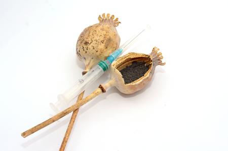 Hypodermic syringe with blue needle and dry opium poppy isolated on white background. Stock Photo