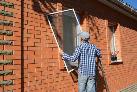 Mosquito wire screen installation. Contractor installing mosquito wire screen on house window to protect from insects. Stock Photo