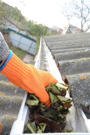 Gutter Leaf Removal Photo. Roof gutter with fallen leaves. Rain gutter with roofer hand cleaning photo.