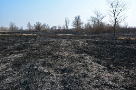 Burning dead grass in spring. The reasons for spring grass burning are largely unfounded and rather than being beneficial, grass burning is destructive and dangerous.