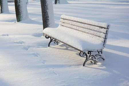 Park wooden bench after snowstorm in morning sun lights. East Coast is frozen over in a bomb cyclone. Stockfoto - 134866160