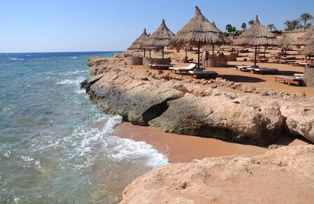 Sunshade umbrellas on the beach with parsols straw sunshades and wooden sunbeds on the beach of Red Sea coast.