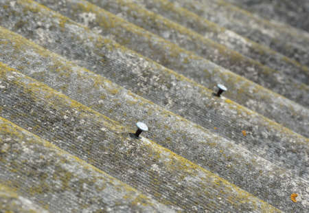 A close-up on old asbestos roof covered with moss and lichen with nails almost pulled out.
