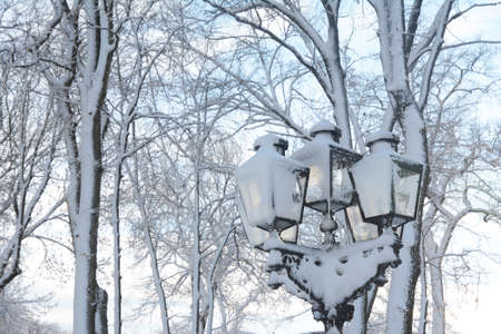 A snowy park in winter with trees and beautiful black cast iron street lantern, victorian style cast iron lamp post covered with snow with light blue sky in the background.