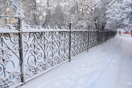 White snowy street, pathway along the park trees surrounded with a beautiful black cast iron fence, elegant wrought iron fence, steel decorative fencing covered with snow in winter. Stock Photo