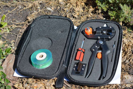 Grafting tools pruner kit including a grafting knife and tape is ready for grafting fruit tree in spring. Standard-Bild