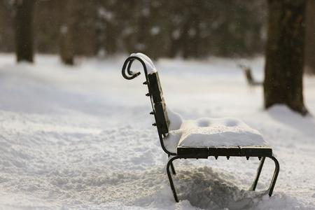 bench park: Banco de parque wiith ducha de nieve