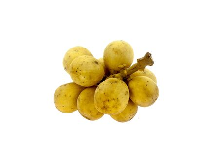 langsat fruit on white background  photo