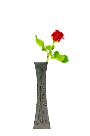 single red rose in black vase on white background photo