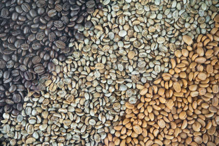 coffee beans Stock Photo - 15606356