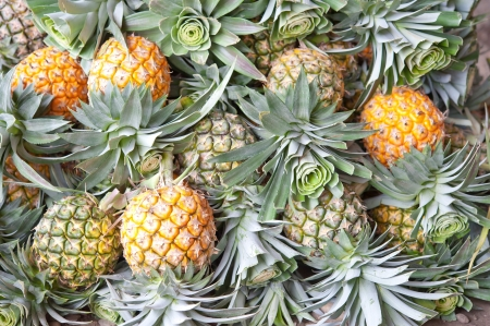 pile of pineapple photo