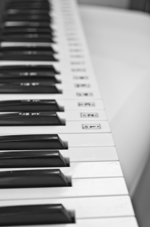octave: piano keys closeup