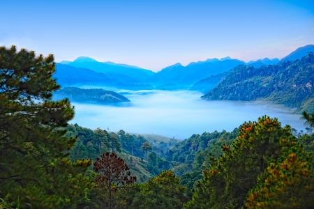 Sea of mist  View from high mountain  Doi angkhang mountain, chiangmai Thailand