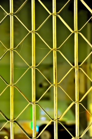 elastic metal fence door photo
