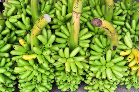 Bunch of green banana on floor in market for sell, thailand photo