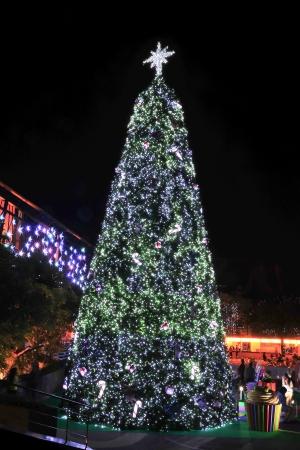 Decorated christmas tree Stock Photo - 18507169